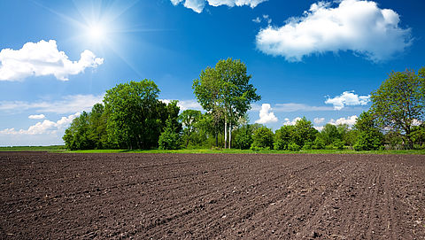 Collectieve claim tegen grondhandelaren