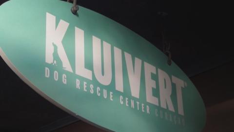 Vragen over gedoneerd geld aan Kluivert Dog Rescue Foundation