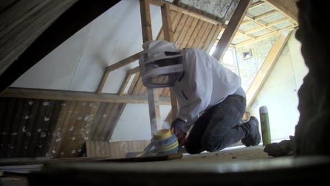 Wespenbestrijders van Thom Ongediertebestrijders lopen in de val en reageren als door een wesp gestoken