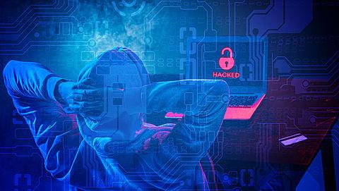 Brabantse hacker licht bedrijven voor tonnen op