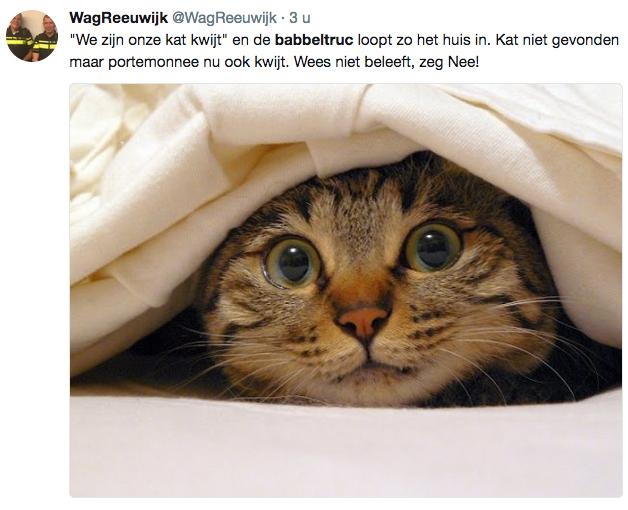Babbeltruc: 'Ik ben mijn kat kwijt'