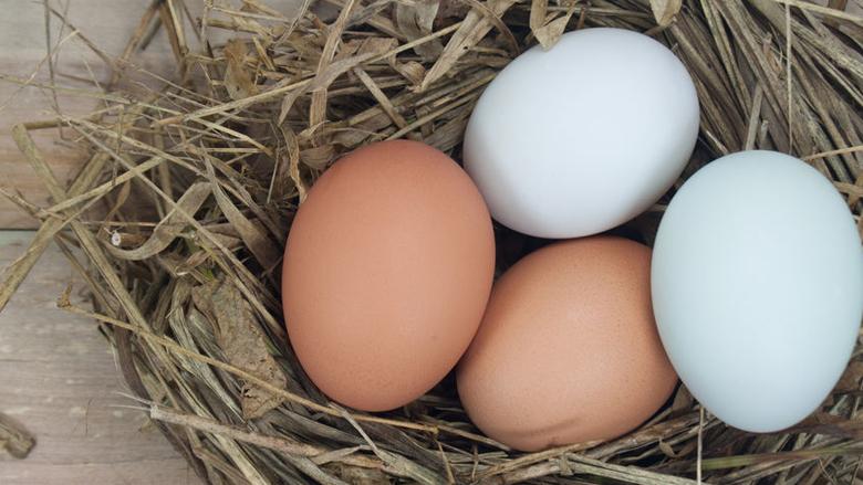 Fikse fraudeboete voor eierhandelaar
