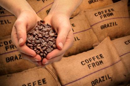 Onvoldoende bewijs in zaak koffieplantage leidt tot vrijspraak