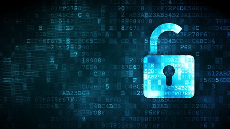 Website tegen ransomware een succes