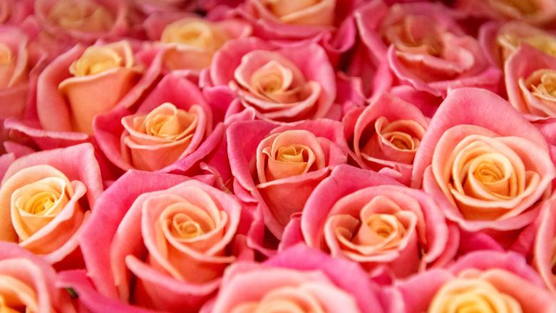 Twee maanden cel voor babbeltruc met bosje rozen