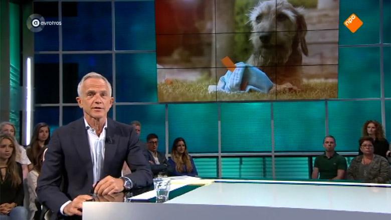 Kamervragen naar aanleiding van uitzending Opgelicht?! over teckelfokkers