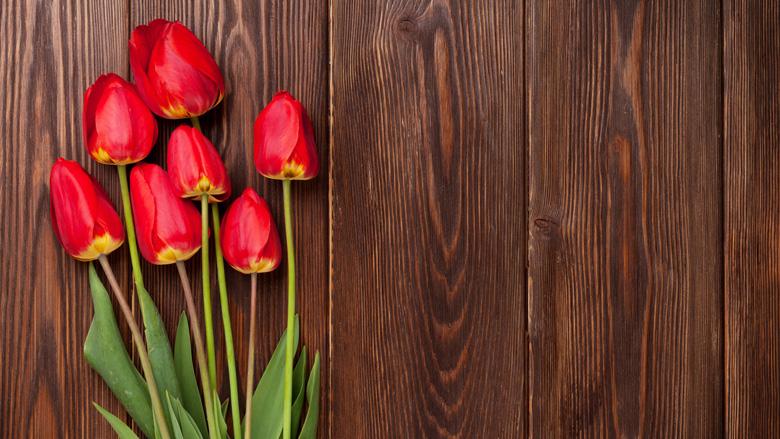 Politie Breda waarschuwt voor oplichter met tulpen