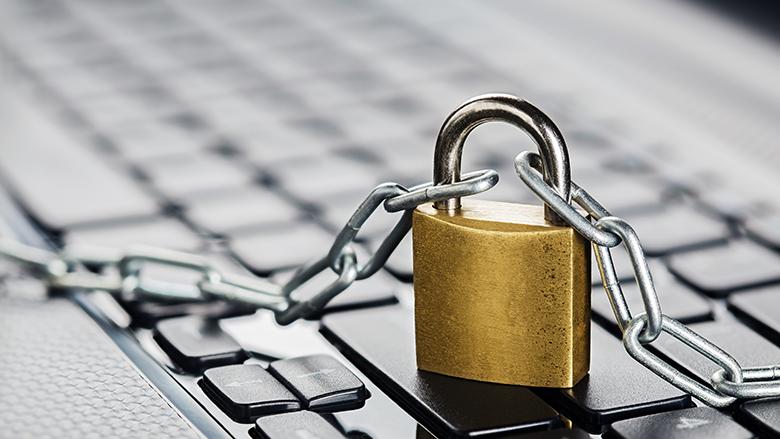 Nederland geeft miljoen euro uit voor meer veiligheid internet